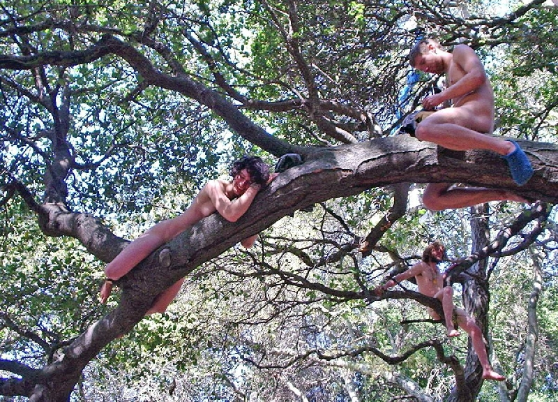 Berkeley nude protest for trees (march 17th 2007)